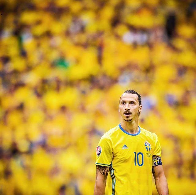 Zlatan Ibrahimovic – ช่างเป็นภาพที่น่าอัศจรรย์ ดูทะเลสีเหลือง! ชาวสวีเดน …
